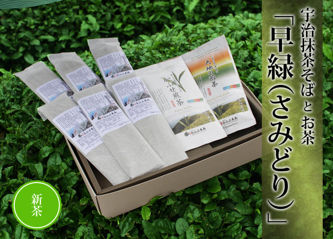 【お中元】 抹茶そばとお茶【早緑(さみどり)】
