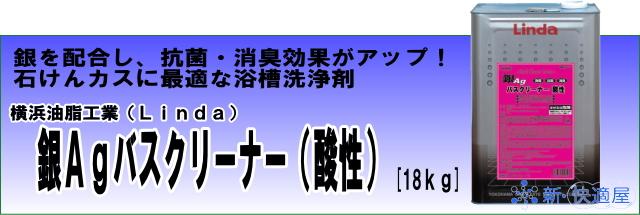 『銀Agバスクリーナー(酸性)』 (18L)