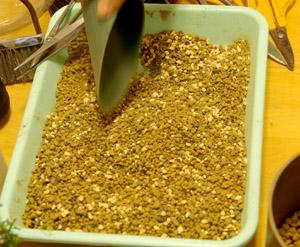 盆栽の作り方 土の配合